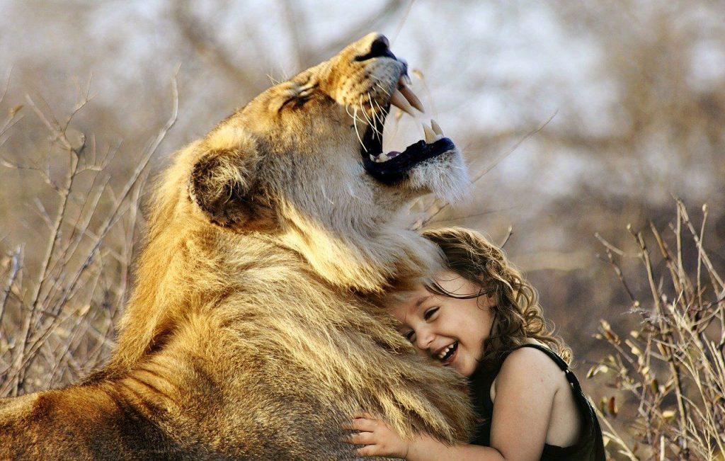 Löwe und Mädchen - Macht und Verletzlichkeit
