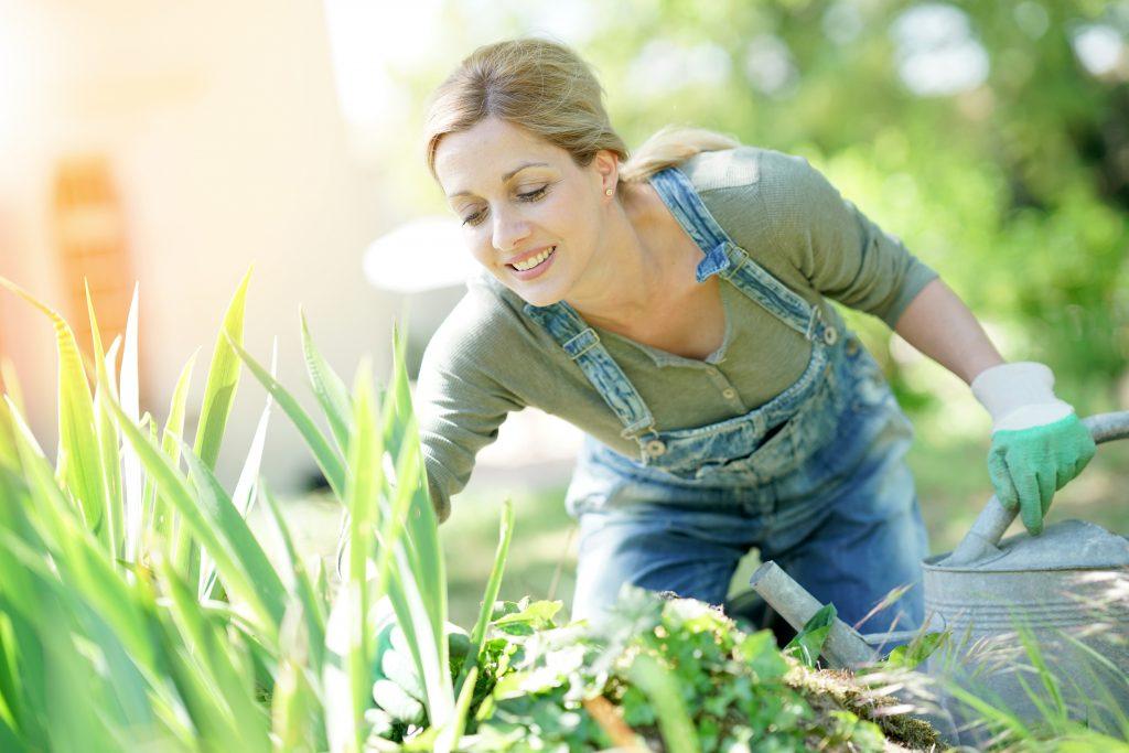 Eine Frau stellt die ursprüngliche Schönheit ihres Gartens wieder her